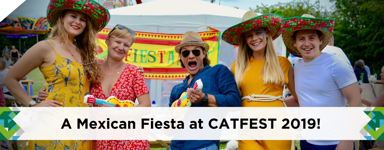 Catsurveys-Ltd-Blog-CATFEST-2019-Mexican-Theme-Fiesta