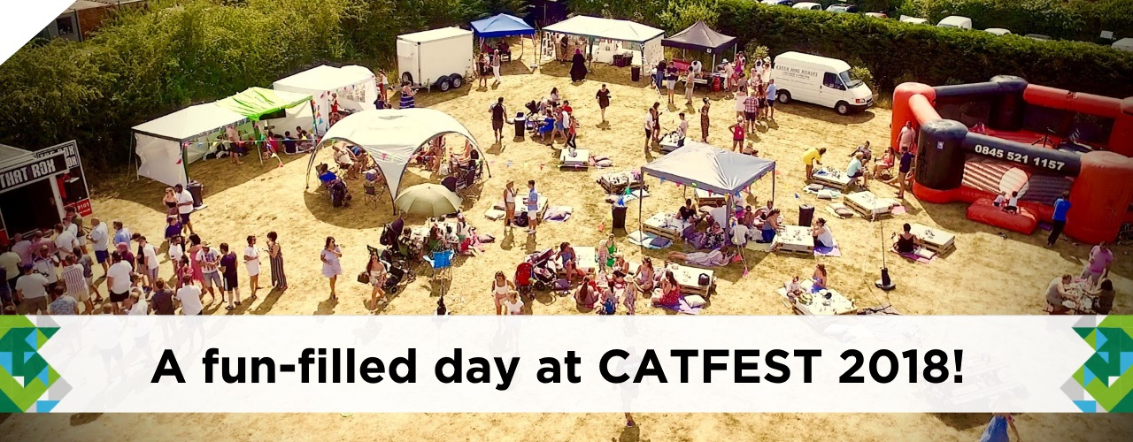 Catsurveys-blog-fantastic-fun-at-CATFEST-2018